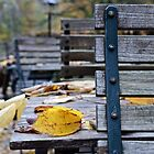 November 2014 by heinrich