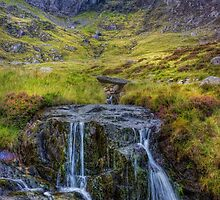 Lake Idwal Stream by Ian Mitchell