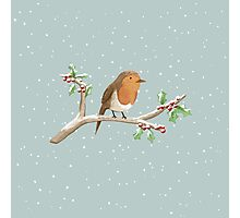 Robin on Branch Photographic Print