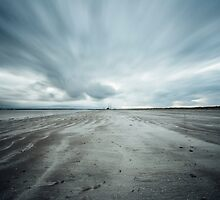 Bull Island, Dublin, Ireland by Alessio Michelini