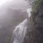 waterfall by suresh pethe