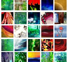Blocks of Color by StacyLee