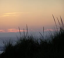 sky over the dunes by michael griffith