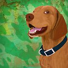 Smiling Brown Vizsla on Green Background by ibadishi