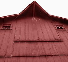 Face on The Barn by Susy Rushing