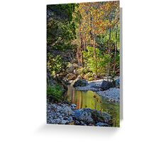 Small Pond at Lost Maples Greeting Card