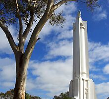 Albury War Memorial by Darren Stones