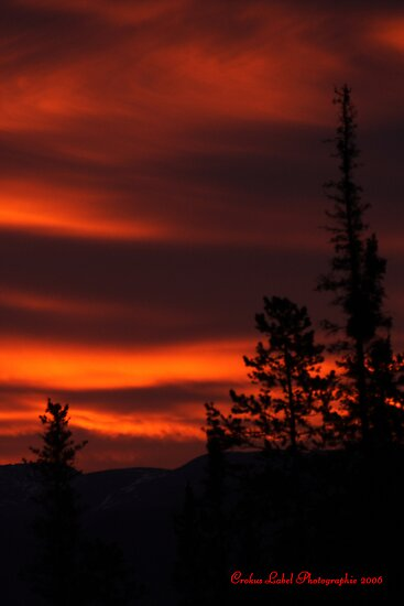 Summer Solstice's Fire Sky by Crokuslabel
