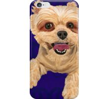 Yellow Coat Mixed Maltese on Blue pillow iPhone Case/Skin