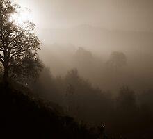 Sepia Mist by PigleT