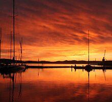 Hobart's Constitution Dock by Jennifer  Jamie