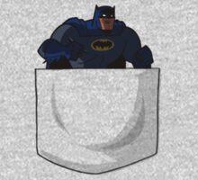 Pocket Batman by futuredirewolf