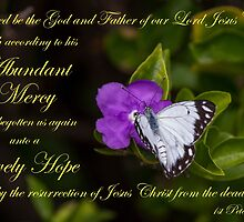 Lively Hope - 1 Peter 1:3 by JLOPhotography