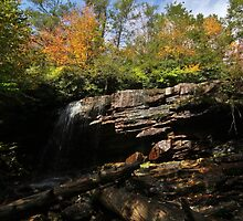 Cave Falls Color by Tim Holmes