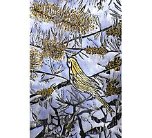 Morning Song in Blue/Yellow Photographic Print