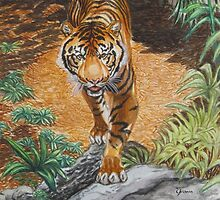 Sumatran Tiger by Voluspa