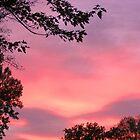 sky vision  by degamelin