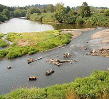 Willamette River by Keeton Gale