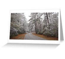 Snow Covered Forest Greeting Card