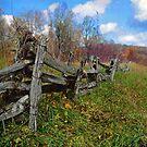 blueridge fence by J.K. York
