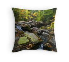 In the Valley of the Leaf Throw Pillow