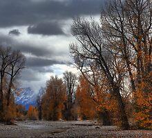 Autumn at Valdez by zumi