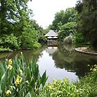 Inviting Tea House, across the Duck Pond, Botanic Gdns. Adelaide C.B.D. by Rita Blom