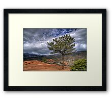 One Tree Hill Framed Print