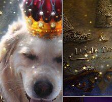 Princess Luna - DETAILS by houk