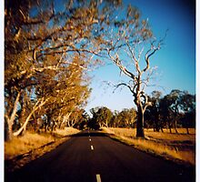Country Road by Damien Loverso