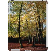 The splendour of autumn leaves in a woodland glade. iPad Case/Skin