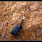Volcanic Bottle by Georgi Bitar