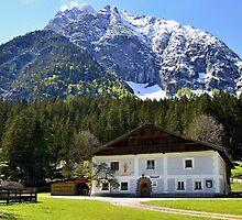 Old house under the Alpine peak by Elzbieta Fazel