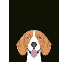 Darby - Beagle phone case gift ideas for beagle owners and gifts for dog person Photographic Print