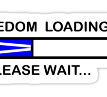 FREEDOM LOADING 45% Sticker