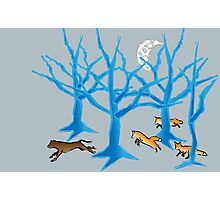 The Foxes Hunt the Hound Photographic Print