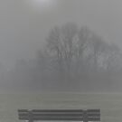 A QUIET PLACE TO SIT AND KISS by relayer51