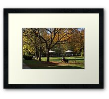 Chatting under the tree Framed Print