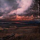 Burning Sky by Pretorious
