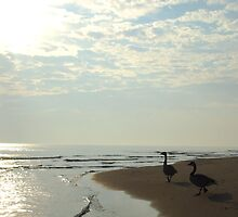 Three Geese by Janet Rymal