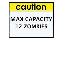 Max Capacity 12 Zombies by Gina Mieczkowski