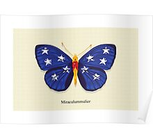 Miraculummulier AKA Wonder Bug Poster