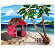 Pink CoCoNut Hut Poster
