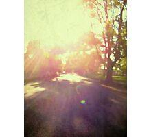 toward spring sun Photographic Print
