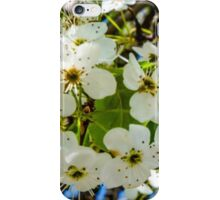 SPRING BLOSSOM PERFECTION iPhone Case/Skin