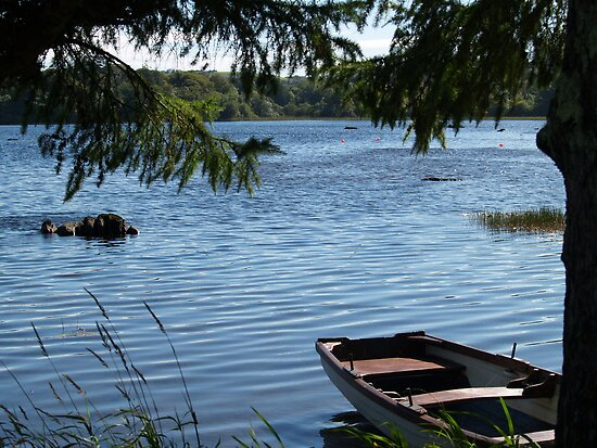 Rowing boat moored on the banks of Lough Eske, County Donegal, Ireland. by photosofireland