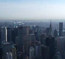 New York City skyline from Empire State Building by Jack Nolan