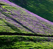 Beechworth Landscape Two by Mark Higgins