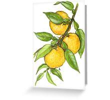 Yuzu - Citrus junos Greeting Card