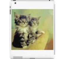 Two Pittens iPad Case/Skin
